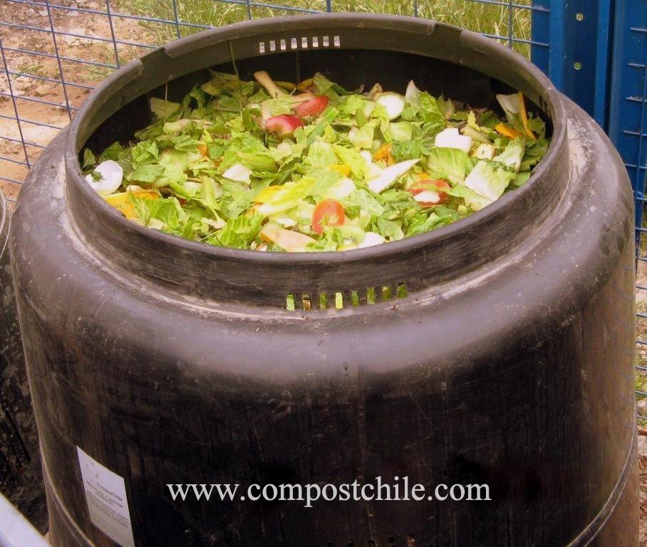 composteras con verduras