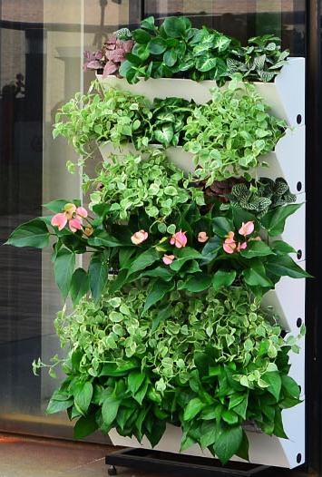 Maceta autorregante para jardin vertical hydrofalls compostchile - Como hacer un muro verde ...